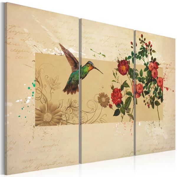 Obraz - Koliber i róże (60x40 cm) A0-N2875