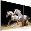Obraz - Konie - moc i prędkość A0-N1526