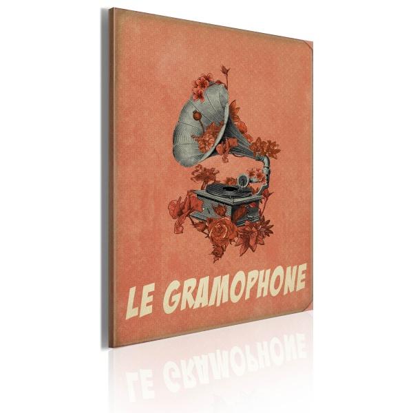 Obraz - Le gramophone (50x70 cm) A0-OBRPLK31