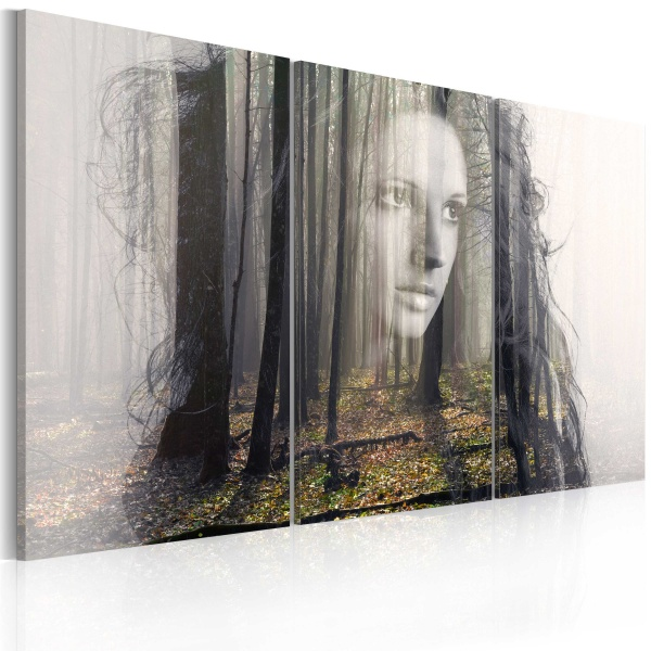 Obraz - Leśna nimfa (60x40 cm) A0-N2370
