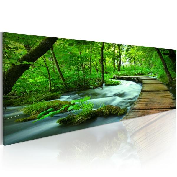 Obraz - Leśny deptak (120x40 cm) A0-N2783