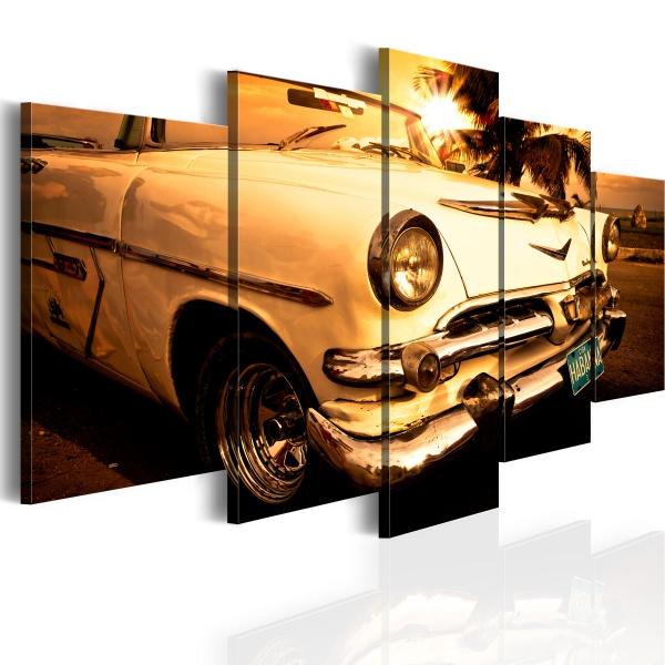 Obraz - Luksusowa przejażdżka (100x50 cm) A0-N2586