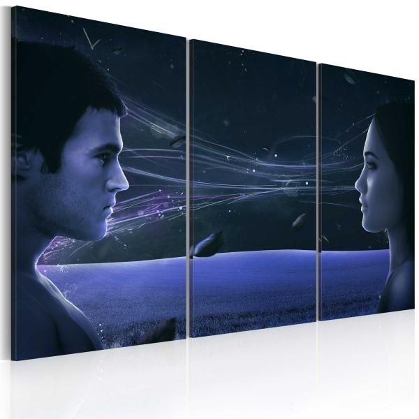 Obraz - Magnetyczne spojrzenie - tryptyk (60x40 cm) A0-N2256