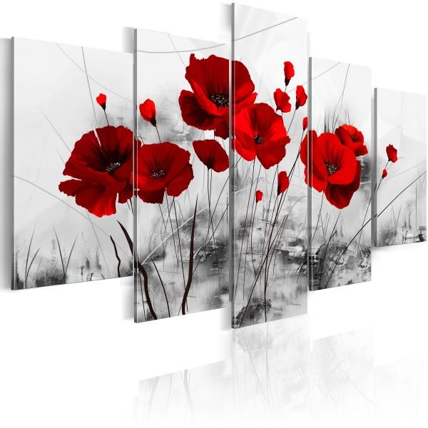 Obraz - maki - czerwony  cud (100x50 cm) A0-N2631