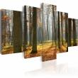 Obraz - Malowniczy krajobraz leśny A0-N1572