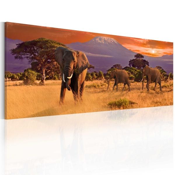 Obraz - Marsz afrykańskich słoni (120x40 cm) A0-N3098