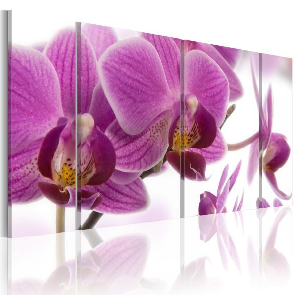 Obraz - Marvelous orchid (60x30 cm) A0-N1982