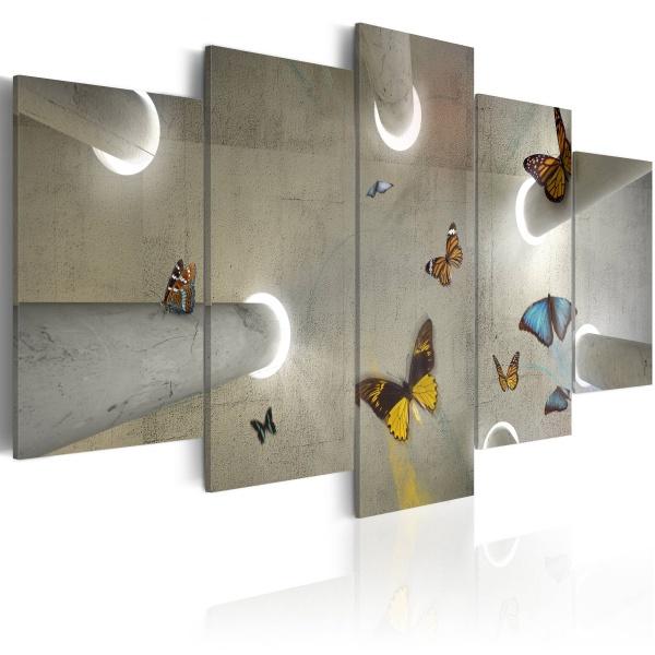 Obraz - Motylarnia (100x50 cm) A0-N2472