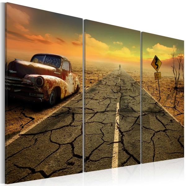 Obraz - Na pustyni (60x40 cm) A0-N3424
