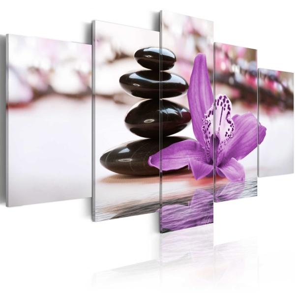Obraz - Orchidea, kamienie i zen (100x50 cm) A0-N2468