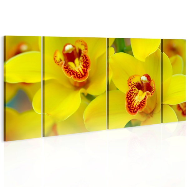 Obraz - Orchids - intensity of yellow color (60x30 cm) A0-N1979