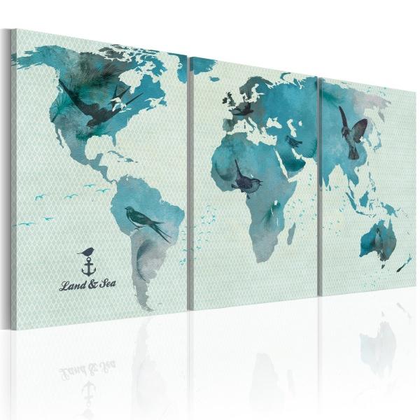 Obraz - Ornitologiczna mapa świata (60x30 cm) A0-N2023