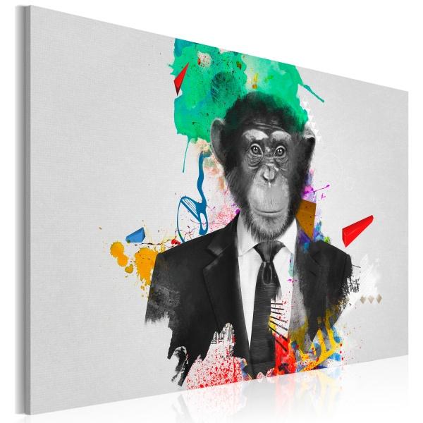 Obraz - Pan Małpa (60x40 cm) A0-N2928