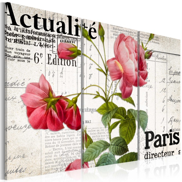 Obraz - Paris directeur (60x40 cm) A0-N3090