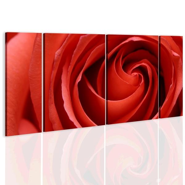 Obraz - Passionate rose (60x30 cm) A0-N1978