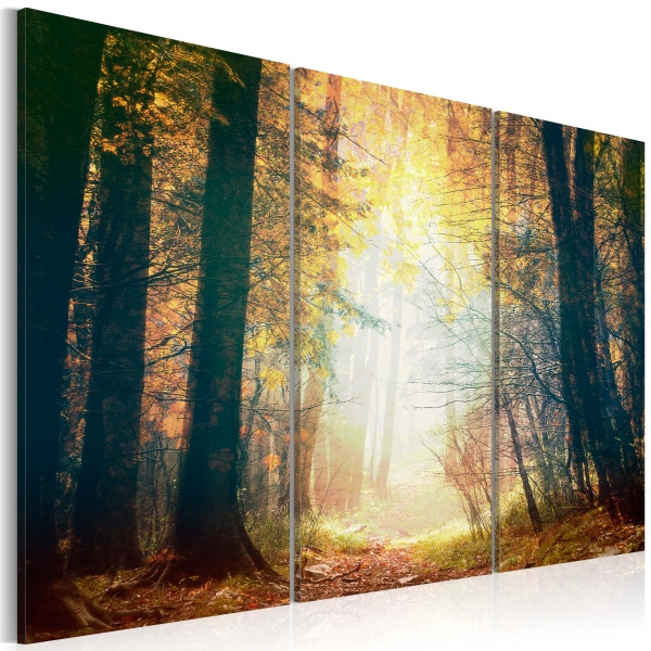Obraz - Piękno jesieni - tryptyk (60x40 cm) A0-N2521