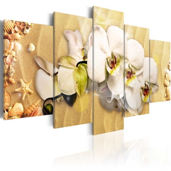 Obraz - Plaża i orchidea (100x50 cm) A0-N2305