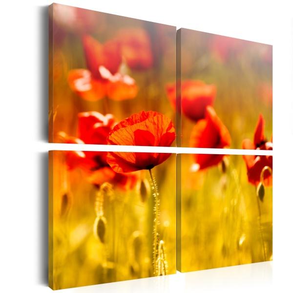 Obraz - Pora letnia (40x40 cm) A0-N1942