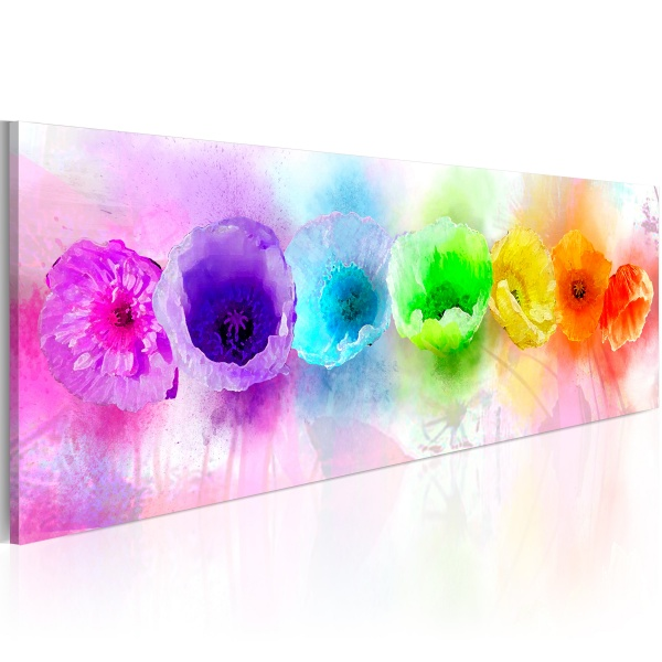 Obraz - Rainbow-hued poppies (120x40 cm) A0-N2568
