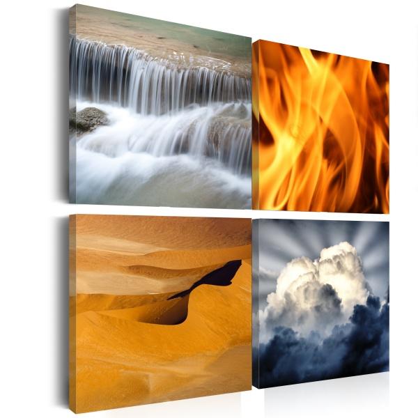Obraz - Różnorodność przyrody (40x40 cm) A0-N1935