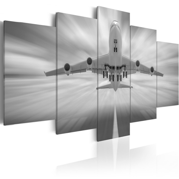 Obraz - Samolot (100x50 cm) A0-N1863
