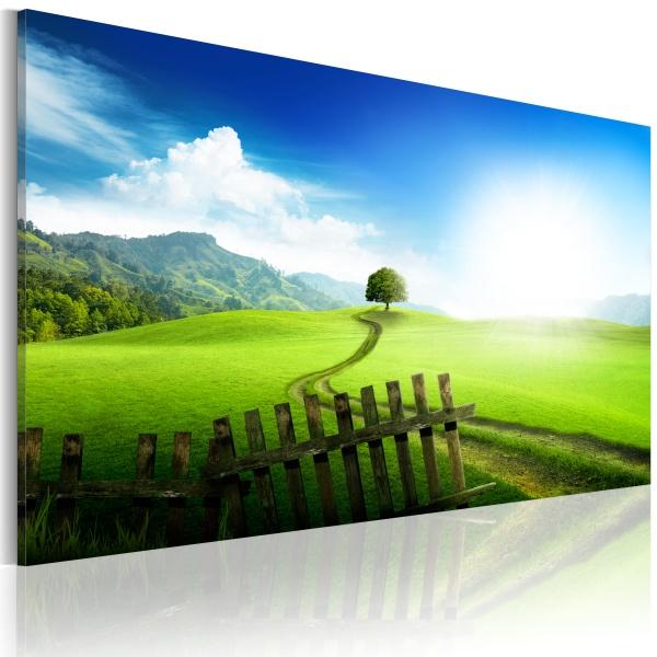 Obraz - Ścieżka przeznaczenia (60x40 cm) A0-N3011
