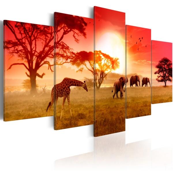 Obraz - Słoneczne kolory Afryki (100x50 cm) A0-N3111