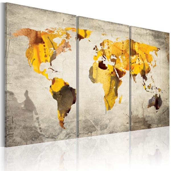 Obraz - Słoneczne kontynenty - tryptyk (60x40 cm) A0-N2055