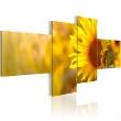 Obraz - Słoneczne słoneczniki A0-N1414
