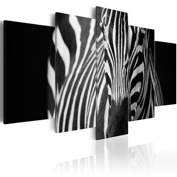 Obraz - Spojrzenie zebry (100x50 cm) A0-N3135