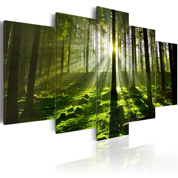 Obraz - Spokój umysłu (100x50 cm) A0-N2995
