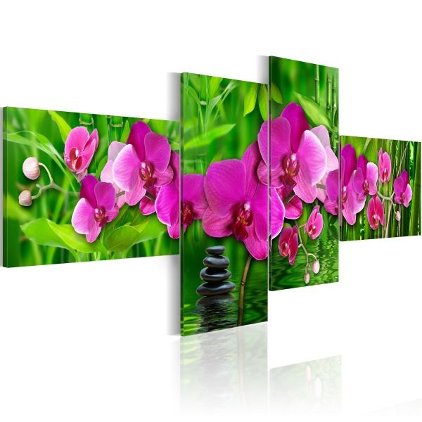 Obraz - Strefa Zen w mocnych barwach (100x45 cm) A0-N2364
