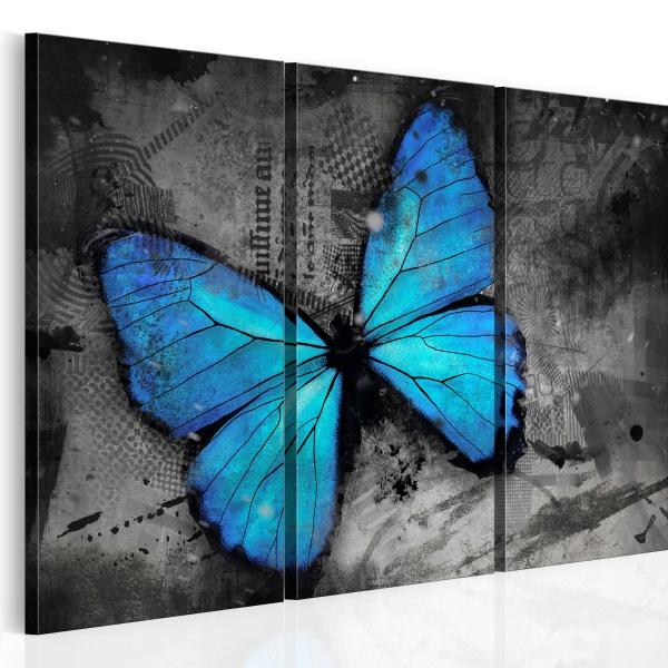 Obraz - Studium motyla - tryptyk (60x40 cm) A0-N2698