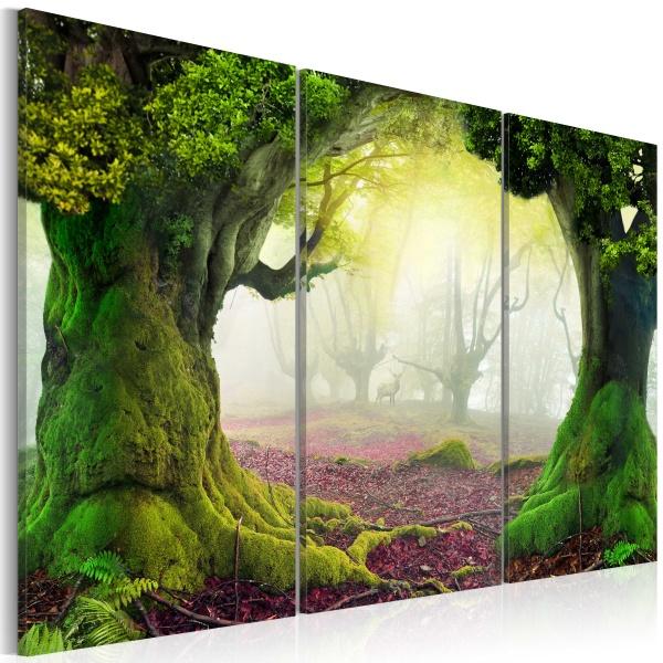 Obraz - Tajemniczy las - tryptyk (60x40 cm) A0-N3201