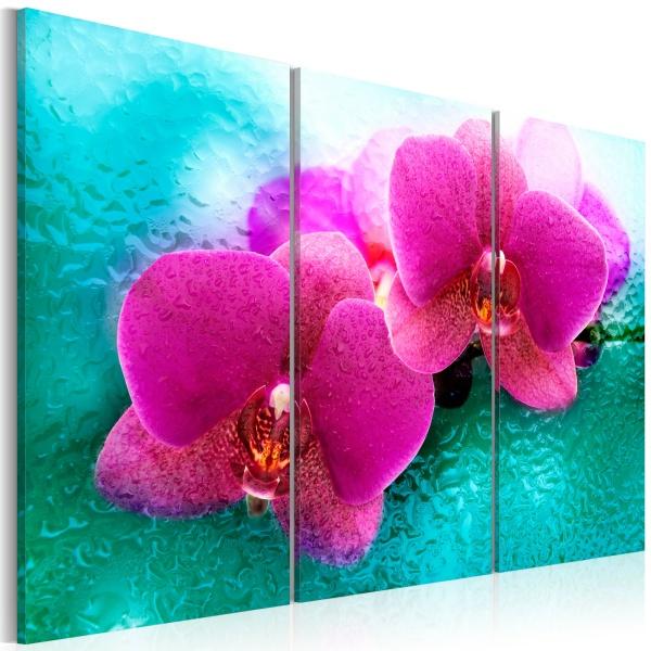 Obraz - Turkus i orchidea (60x40 cm) A0-N2367