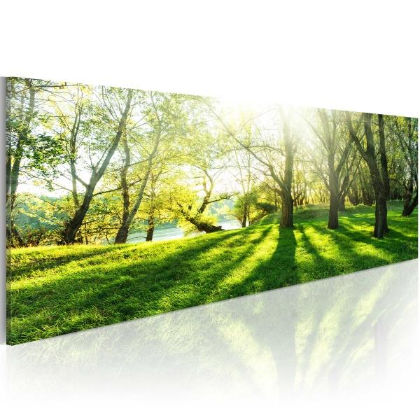 Obraz - W promieniach słońca (120x40 cm) A0-N3765