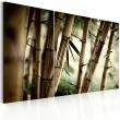 Obraz - W tropikalnym lesie A0-N1372
