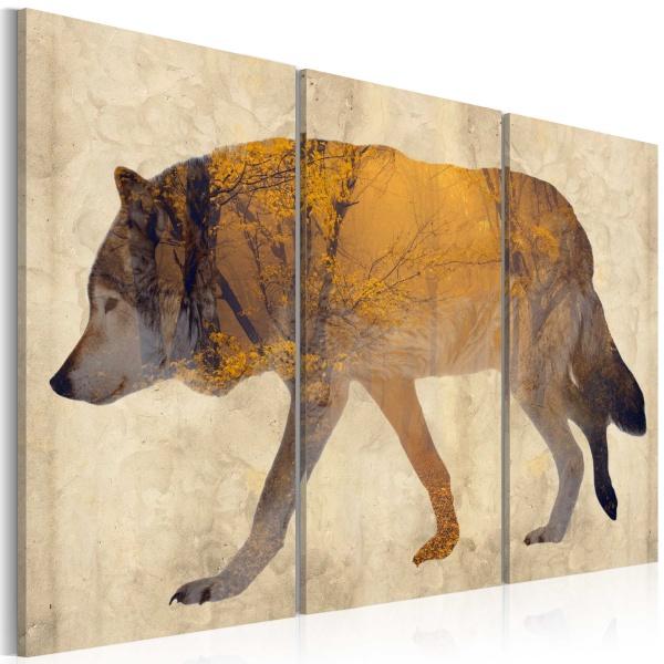 Obraz - Wędrujący wilk (60x40 cm) A0-N3682