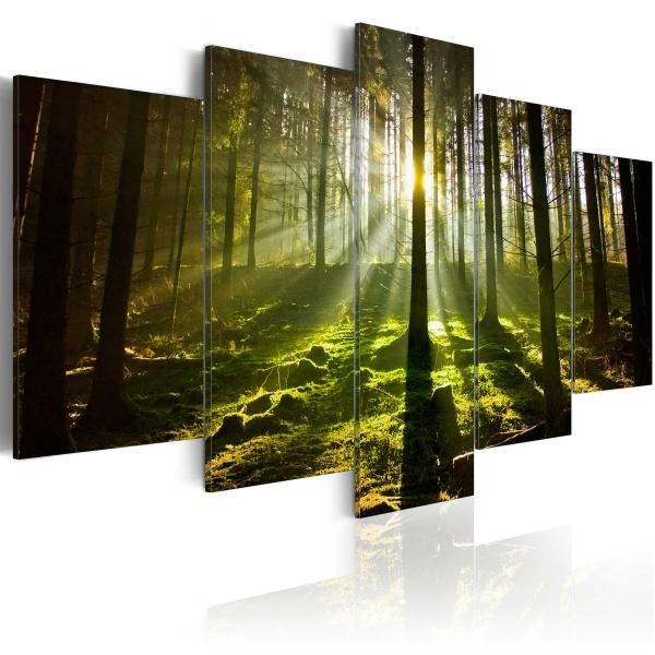 Obraz - Wiosenna cisza (100x50 cm) A0-N2997