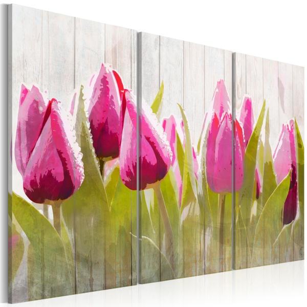 Obraz - Wiosenny bukiet tulipanów (60x40 cm) A0-N3091