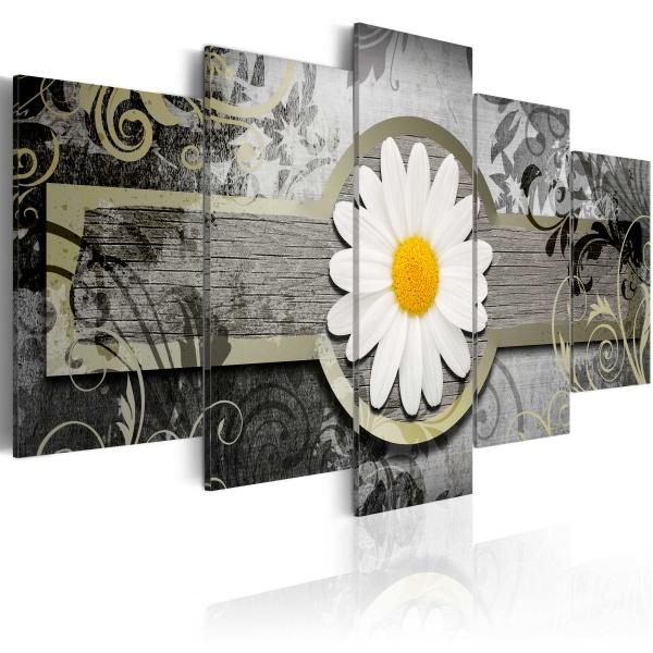 Obraz - Wspaniały okaz (100x50 cm) A0-N3007
