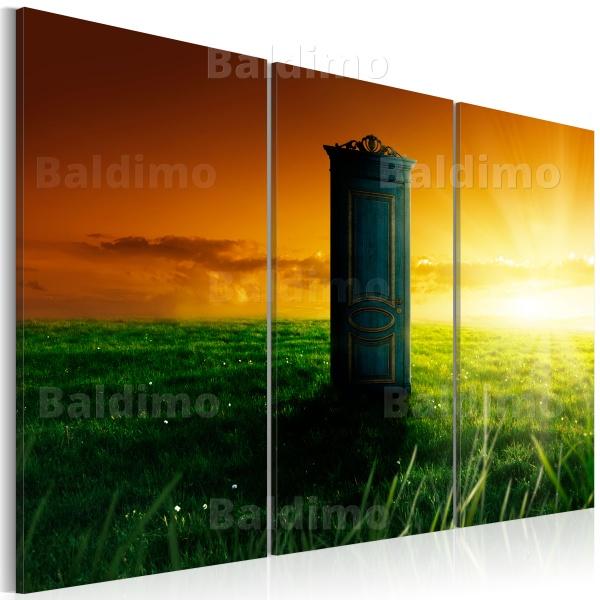 Obraz - Zaczarowane drzwi (60x40 cm) A0-N2980
