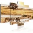 Obraz - Zebry na sawannie A0-N1551