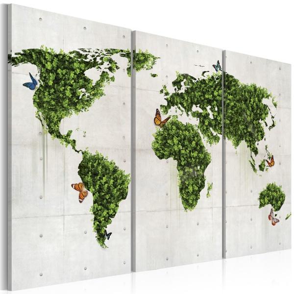 Obraz - Zielona kraina motyli - tryptyk (60x40 cm) A0-N2057