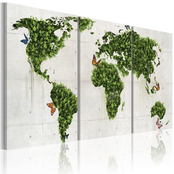 Obraz - Zielone lądy (60x30 cm) A0-N2020