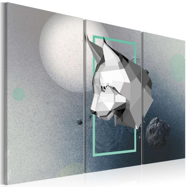 Obraz - zwierzę - 3D - tryptyk (60x40 cm) A0-N2338