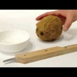Otwieracz do kokosa Vacu Vin VV-4653560