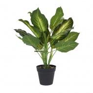 Roślina w donicy IV 45cm Intesi
